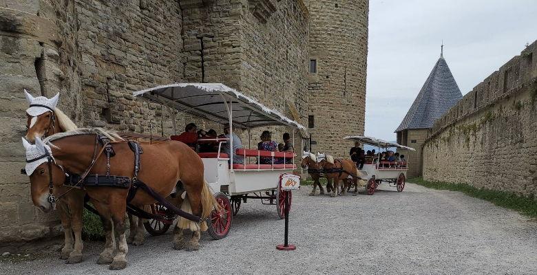 CALECHE©lkaOMTCarcassonne.jpg