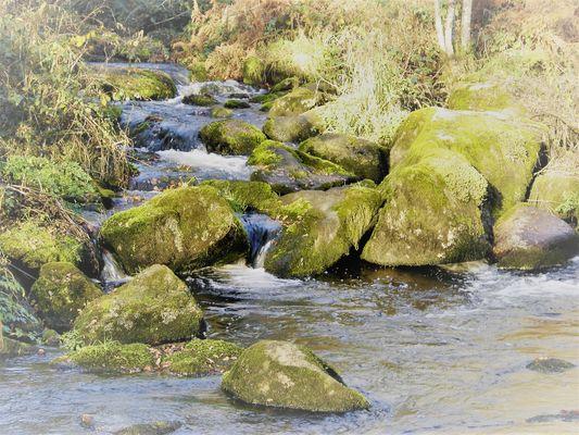 rivière Aër - bas de Kergoff - Le Croisty - crédit photo OTPRM (8).JPG