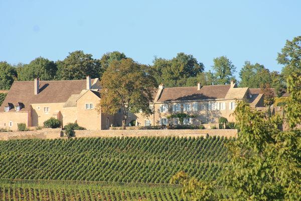 Givry-vins-vignes-septembre-cadole-OT (26).JPG
