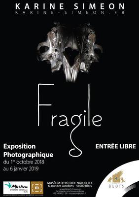 9480_559_affiche_fragile.jpg