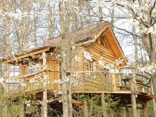 Cabane à l_orée du bois à Castelnau (2).JPG
