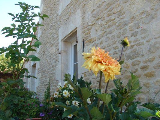 chambres-d-hotes-le-marais-picotin-85420-saint-pierre-le-vieux-20.JPG