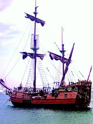 pirates_brigands_©freeimages.jpg