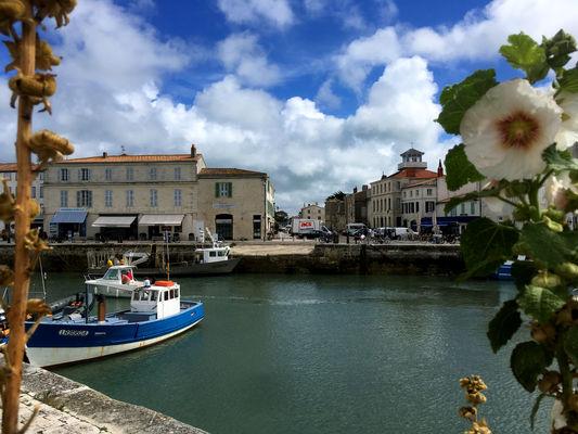 Saint-Martin-de-Ré (8) @ jérome LECHELLE.jpg