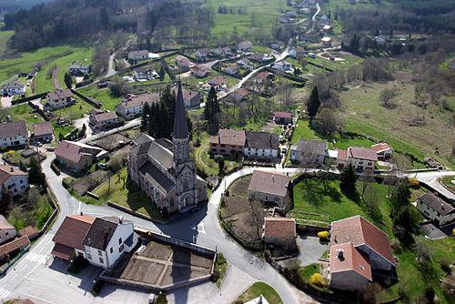 raonauxbois2.jpg