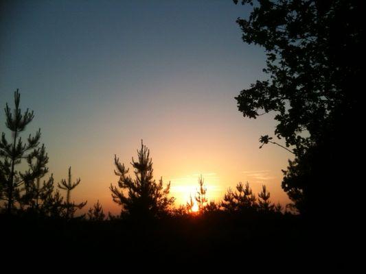 sortie_nature_nocturne_La_Roche_Posay.JPG