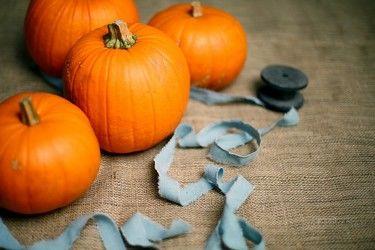 Halloween sit.jpg