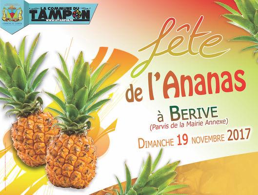 affiche fête de l'ananas 2017.jpg