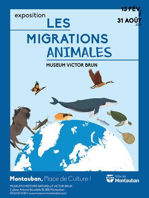 13.02.19 au 31.08.19 migrations animales.jpg