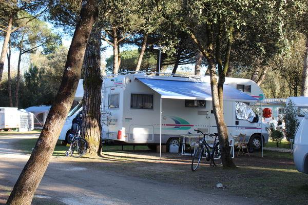 Camping_la_grainetiere_ile_de_re (17).JPG