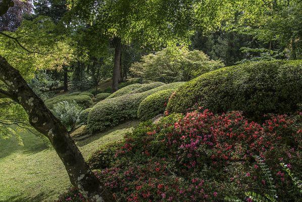 maulevrier-parc oriental-printemps5.JPG