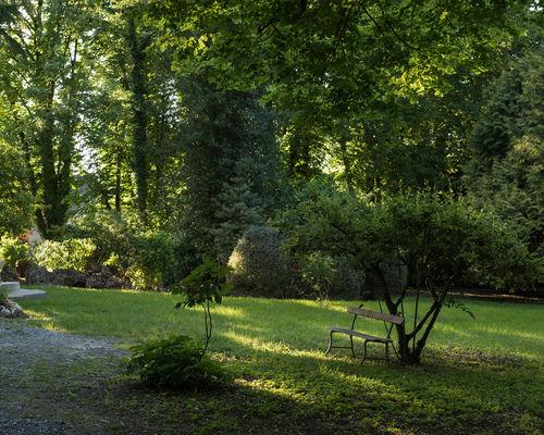 Le Castel - Lussac les Châteaux - ©Eva Avril (34).jpg