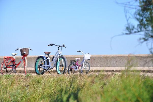 go bikes 2.JPG