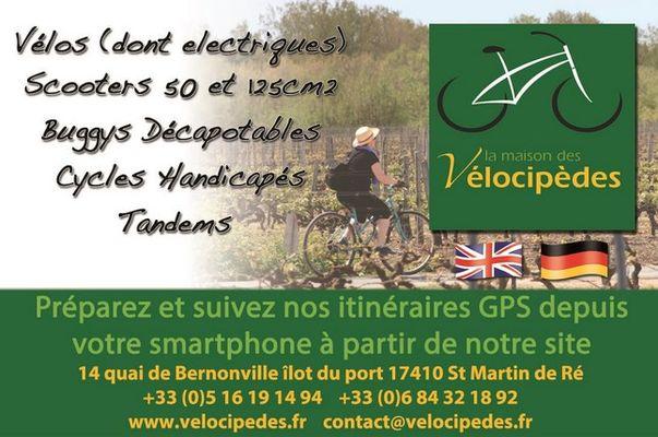 velocipedes (2).jpg