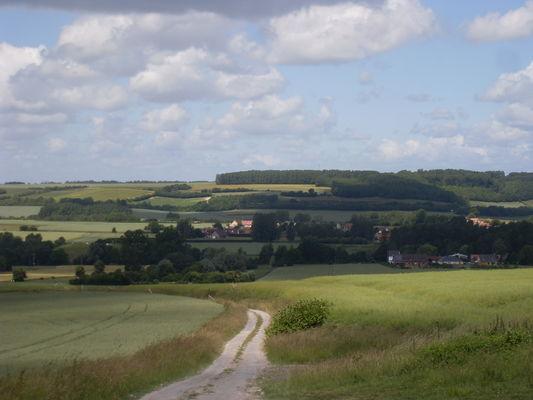 Paysage rural.jpg