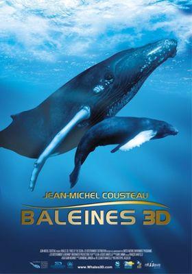 baleines en 3D.jpg