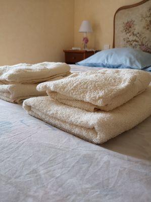 combrand-chambres-dhotes-les-mesanges-chambre-fleurs3.jpg