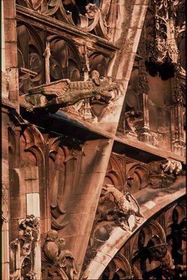 cathédrale détail gargouilles.jpg