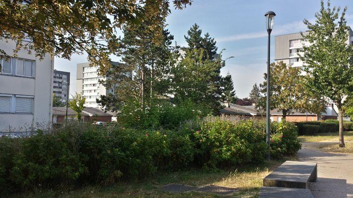 mont liebaut_19-07-18 (10).jpg
