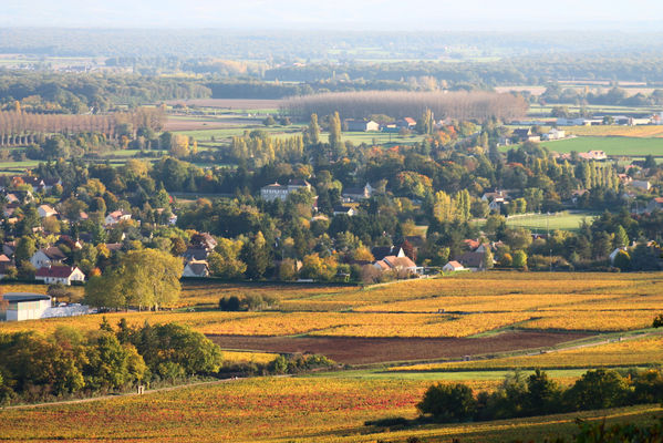 11-Vignes-Givry-automne-2017-JM (41).JPG
