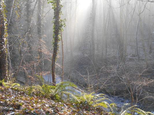 Robinsons Vallée de la Lawe2 - Copyright OTBB.JPG
