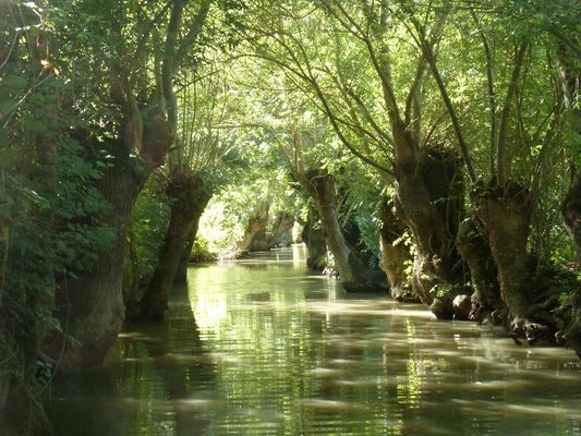 Embarcadere-de-l-abbaye-marais-poitevin-maillezais-85420-5.jpg