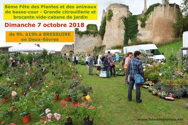 181007-bressuire-fete-plantes-affiche.jpg