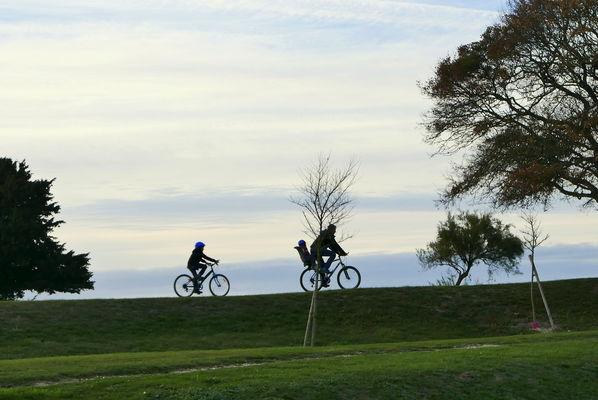Vue des vélos lond ge la mer.JPG
