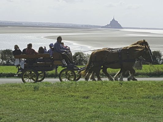 Ferme equestre des Courlis (3).jpg