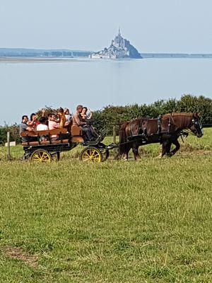 Ferme equestre des Courlis (4).jpg