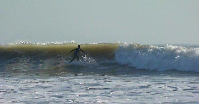 ecole de surf bois plage ile de ré gros jonc.jpg
