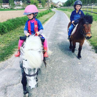 Poney_club_Centre_equestre_La_Roche_Posay_Yzeures_sur_Creuse (4).jpg