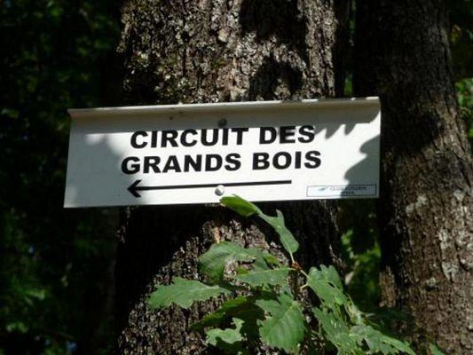 circuit_des_grands_bois.jpg
