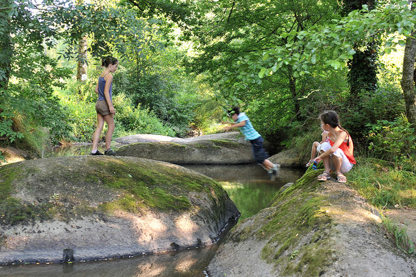 rocher-branlant-jardin-des-chirons-2000bressuirais (pw) 5292.jpg