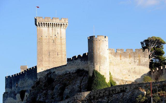 Château de Beaucaire 002 réduite.jpg