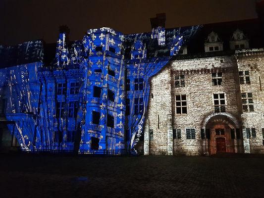 photo futé son et lumière Blois.jpg