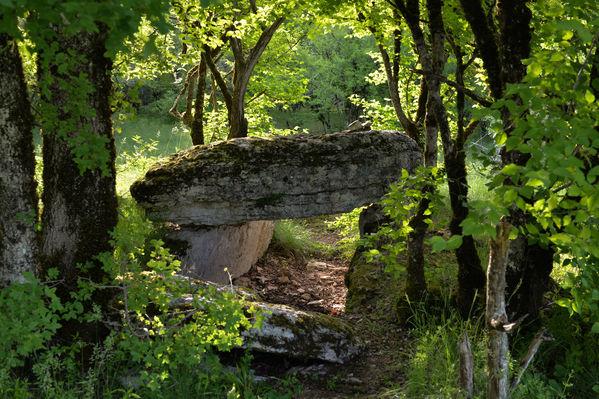 dolmen Joncas2.jpg