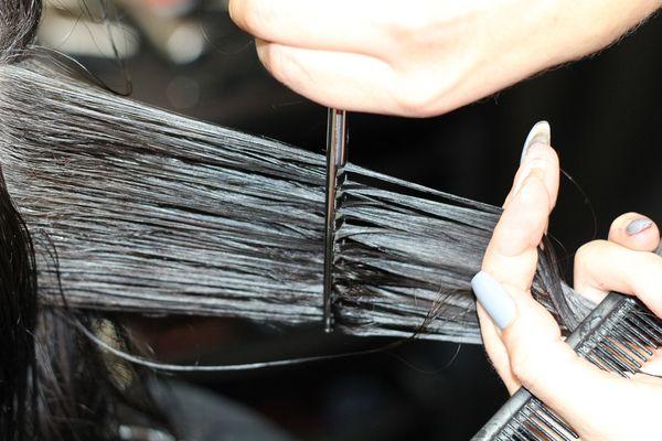 hairdressing-1516352_1920.jpg