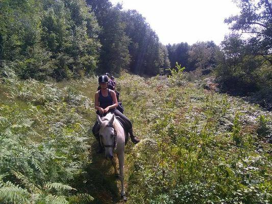 Au pré des chevaux Pressac ©Au Pré des chevaux.jpg