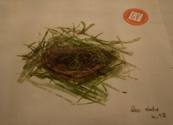animation 11 mai - broderie végétale.jpg