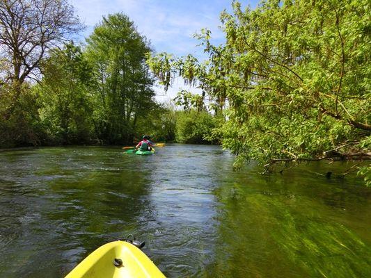 Sortie_canoe__La_Fourmy_Angles_sur_l_Anglin_La_Roche_Posay (3).JPG