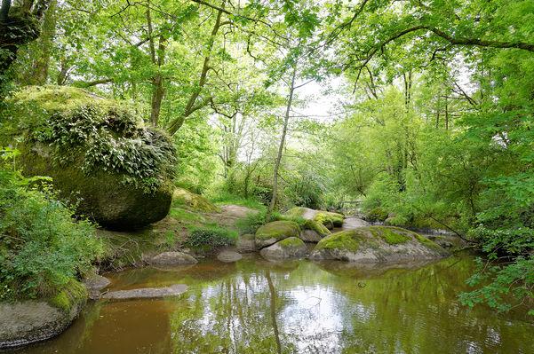 rocher-branlant-jardin-chirons-pw-5988-2000.jpg