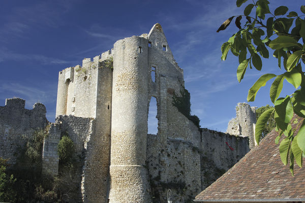 Forteresse Angles sur l'Anglin (3).jpg
