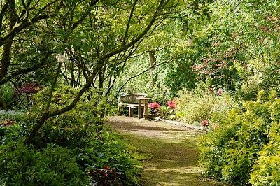 jardins Cistus (pw) 5797-sit.jpg