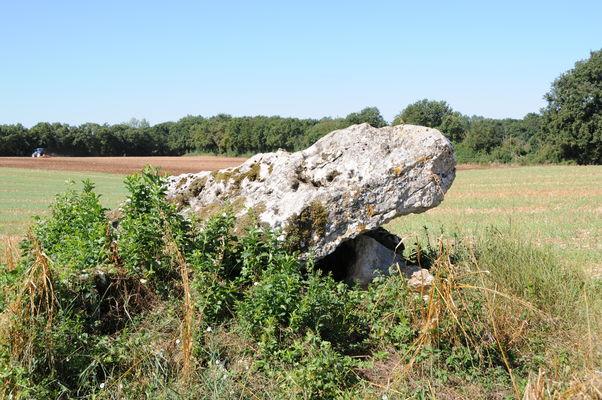 Dolmens de Villaigue - Saint Martin L'Ars ©Béatrice Guyonnet (4).JPG