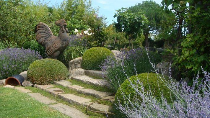 jardin bosselé4.JPG