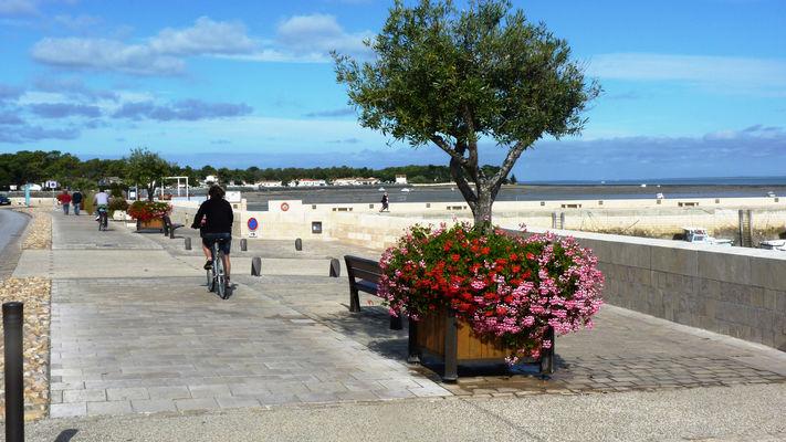 port-de-rivedoux-plage©Julie-Foulquier-(web).jpg