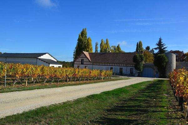 Visite gourmande domaine Le Portail.jpg