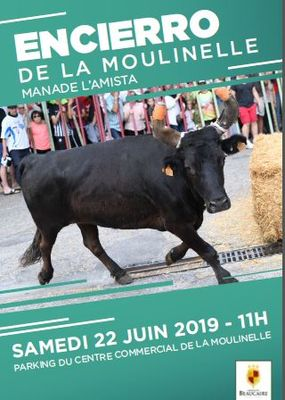 Affiche Encierro de la Moulinelle.JPG