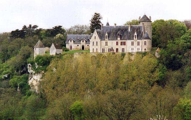 Château de la Guitière - St Pierre de Maillé © JL Bruère.jpg